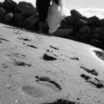 Photographers_in_Tauranga (11)