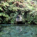 Rotorua_Taupo_wedding_photographers (135)