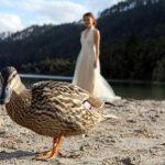Rotorua_Taupo_wedding_photographers (67)
