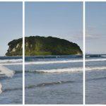 Rotorua_wedding_photographers (3)