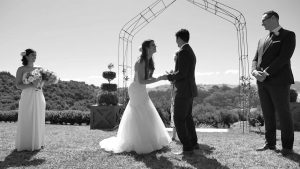 Stone Terrace Hot Water Beach wedding video
