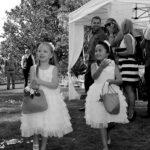 wedding photographers tauranga