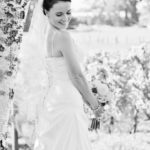 Napier wedding photography and video