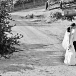 wedding in the vines