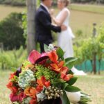 Waiheke wedding photographers