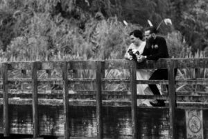 Wedding videographer Rotorua