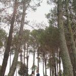 Matarangi-photographers-Coromandel029