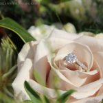 Wedding_videos_New_Zealand (3)